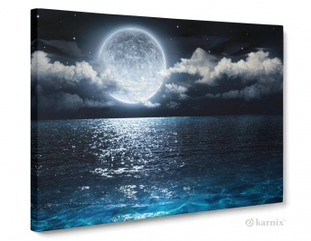 Obraz na płótnie Canvas Panorama Blue Moon